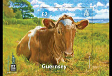 Guernsey 2016   Guernsey cow  ovpt  New york stampshow 2016  m/s      mnh us