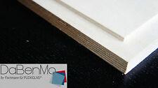 18mm Birke Multiplex Holz Zuschnitt kostenlos auf Mass