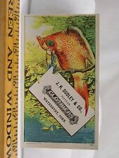 Victorian Trade Card J.H Dudley & Co Clothiers Colorful Exotic Parrot Bird F38