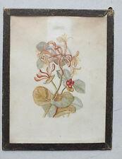 ANCIENNE AQUARELLE - DATEE DE 1882 - FLEURS