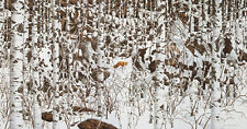 Jigsaw puzzle Winterscape Woodland Encounter 500 piece NEW Made in USA