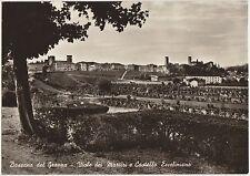 BASSANO DEL GRAPPA - VIALE DEI MARTIRI E CASTELLO ECCELINIANO (VICENZA) 1958
