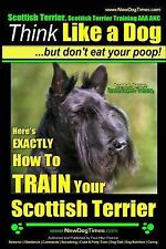 Scottish Terrier, Scottish Terrier Training AAA AKC Ser.: Here's Exactly How...