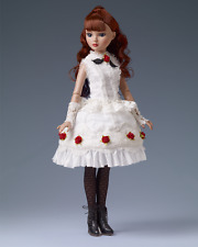 Beautiful Top Tier Ellowyne Wilde doll NRFB Tonner LE 125