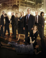 Law and Order : SVU [Cast] (21502) 8x10 Photo