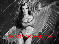 """Beautiful Actress Yvonne De Carlo """"The Munsters"""" """"Lily"""" 60s TV Show PHOTO! #(7b)"""