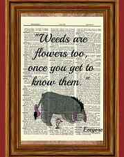 Eeyore Winnie the Pooh Dictionary Art Print Picture Poster Weed Quote Nursery