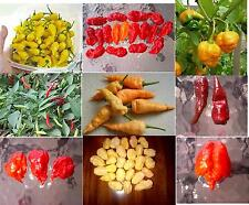 #3 SuperHot Pepper Seed Collection,Chocolate Fatalii,Peach Bhut Jolokia & 8 More