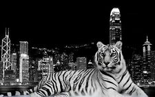 "ABSTRACT BLACK & WHITE TIGER CITY Animal Large Wall Art Canvas Pic 20"" x 30"""