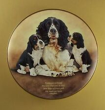 Quote Springer Spaniel Heart Of Gold Plate Springers Danbury Mint Dog Puppy