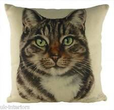 "17"" Tabby Cat Cushion Evans Lichfield DP934 43cm Waggydogz kitten"