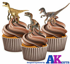 Dinosaur Velociraptor  Boys Birthday Party 12 CupCake Toppers Edible Decorations