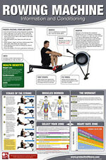 ROWING MACHINE WORKOUT Professional Fitness Gym Wall Chart Poster