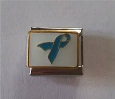 9mm Classic Size Italian Charm E66  Teal Blue Awareness Ribbon