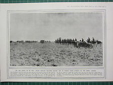 1915 WWI WW1 PRINT ~ SOUTH AFRICAN TROOPERS MOVING OFF PURSUIT OF DE WET
