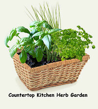 Herb Kitchen Garden Kit  - everything needed for indoor growing - Basket