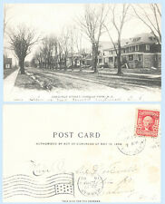 Chestnut Street Homes Roselle Park New Jersey 1906 UDB Postcard Architecture