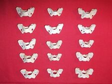 Real Animal Bones butterfly shaped Mink Atlas vertebrae Jewelry Collection