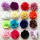 10pcs Kids Baby Girl Toddler Flower Headbands Clip Hair Bow Accessory Corsage 2""