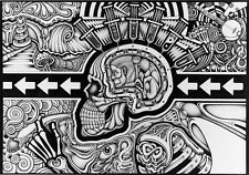 Chris Sheehan POSTER The Conscious Existence Illustration Human Skull BRAND NEW