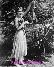 NORMA SHEARER 8X10 Lab Photo 1930s Sexy Christmas Tree Decorate Holiday Portrait