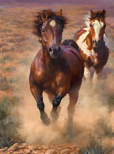 """""""Into the Great Wide Open"""" Bonnie Marris Western Horse Giclee Canvas"""
