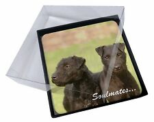 4x Patterdale Terrier Dogs 'Soulmates' Picture Table Coasters Set in G, SOUL-46C