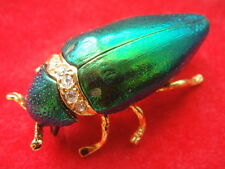 REAL metallic wood-boring beetle Insect Bug Brooch Pin Gold 24K CZ Jewelry