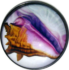Crystal Dome Button Conch Sea Shell - Colorful! 1 inch FREE US SHIPPING