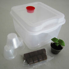 9 Pod Seed Starter Propagation  Germination Kit for Hydro/Soil