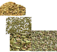 WHOLE FENNEL SEED fresh    14   oz .. many healTH  Benefit FAST FREE SHIPMENT