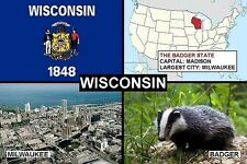 SOUVENIR FRIDGE MAGNET of THE STATE OF WISCONSIN USA