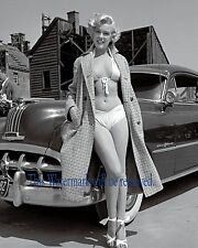 MARILYN MONROE 8X10 GLOSSY PHOTO PICTURE IMAGE 1950's Celebrity, Movie Star M294