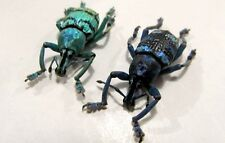 Eupholus Linnei + chevrolati COMBO Blue-Gree Taxidermy REAL Insect Unmounted