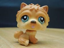 LITTLEST PET SHOP PUPPY DOG CHOW CHOW LPS HASBRO ANIMAL W/ BLUE EYES MAGNET TOY