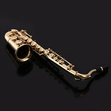 High-quality gifts! Alto Saxophone Sax 1/6 Model wiht Leather Box