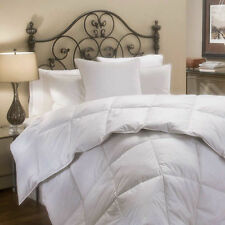 Four Season 1200TC Over-sized & Over-filled Goose Down Alternative Comforter