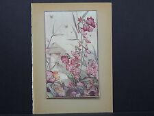 Botanicals, Floral, Edward J. Detmold, c. 1913 #06