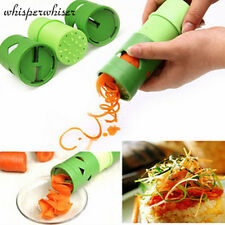 Nouvelle cuisine Fruit Vegetable Cutter Twister Spiral Slicer Grater LCF