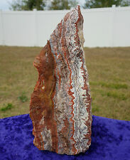 Self Standing Natural ROSETTA AGATE Crystal Display Mexico Specimen Stone