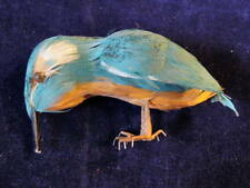 "Vintage Millinery Teal Blue Cinnamon Brown Bird of Real Feathers For Hat 5""  CC7"