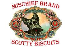 Scottish Terrier  - Mischief Brand Biscuit Tin & Cookies