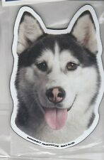 Alaskan Malamute 4 inch face magnet for car or anything metal     New