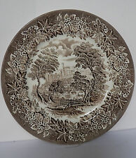 STAFFORDSHIRE 9¾ INCH PLATE MADE BY ENGLISH IRONSTONE TABLEWARE LIMITED ENGLAND