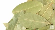 Bay leaf  whole  2 oz wiccan pagan witch herbs magick