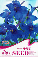 1 Pack 30 Larkspur Seeds Delphinium Consolida Consolida Ajacis Flowers A212
