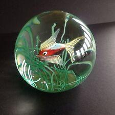 Big Murano Glass Fish Aquarium Cenedese Paperweight/ figure with Label