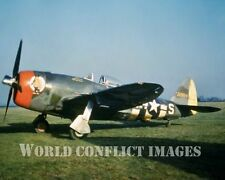 USAAF WW2 Republic P-47 Fighter Hairless Jo 8x10 Nose Art Photo 56th FG WWII