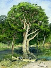 """Water Color Print of Lynn Wilkerson's """"Blanco River"""""""