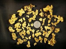 1+ lb Paydirt Gold Flakes Nuggets Precious Metals Panning Dredging Concentrate